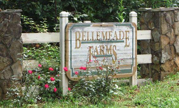 bellemeade-farms-milton-ga-subdivision